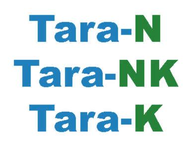 Tara NK Logo Text